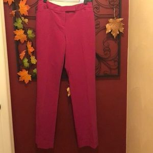 The Limited Lexie pant. Size 10. NWT